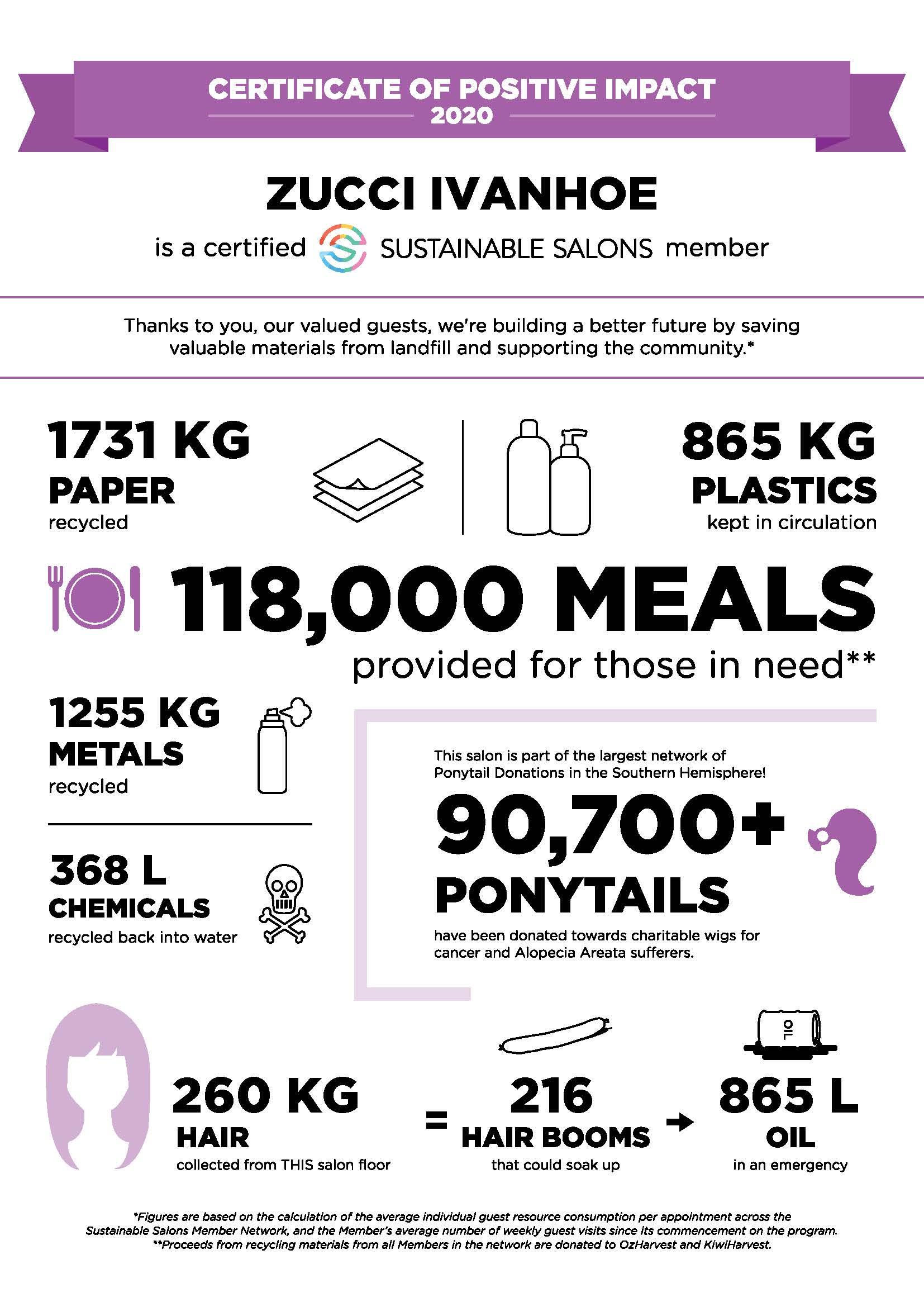 Zucci Ivanhoe's Sustainable Salons Impact Statement.